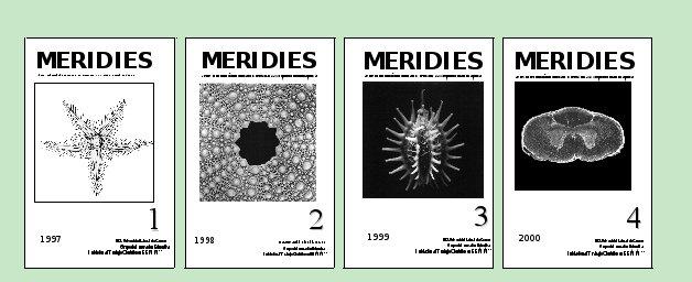 Portadas de los cuatro primer números de Meridies