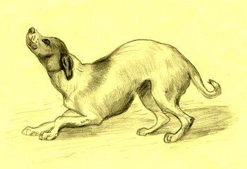 Ilustración del capítulo dedicado al principio de antítesis