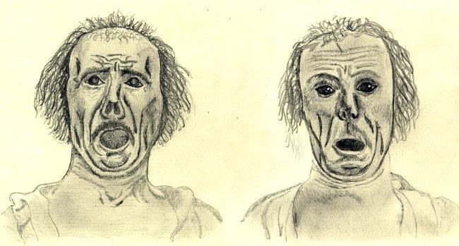 Distintas expresiones faciales de las emociones humanas